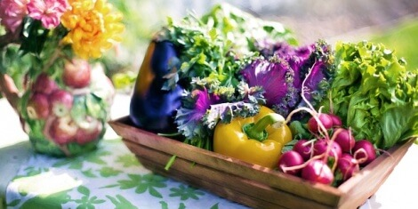 How to Prepare for Spring Gardening