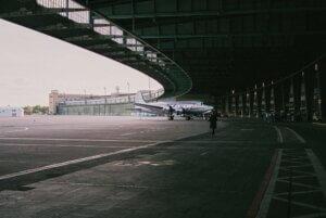 airport bird control hangar